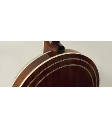 Recording King Banjo - RK- R80 - The Professional Banjo