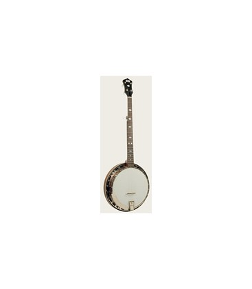 Recording King Banjo - The Madison RK-R25 Resonator Banjo