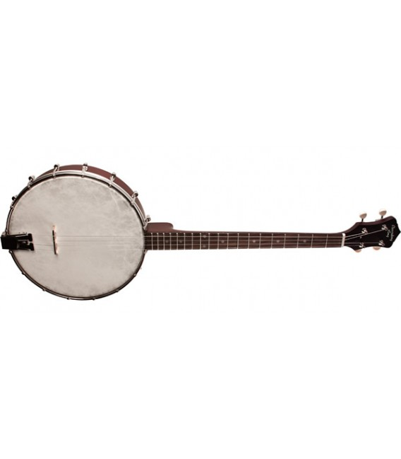 RKT-05 Recording King Dirty 30's Tenor Banjo