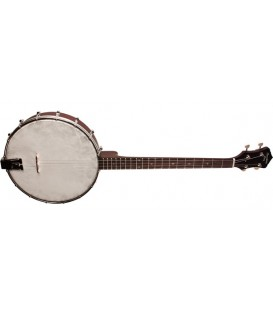 RKT-05 - 4-string Recording King Tenor Banjo