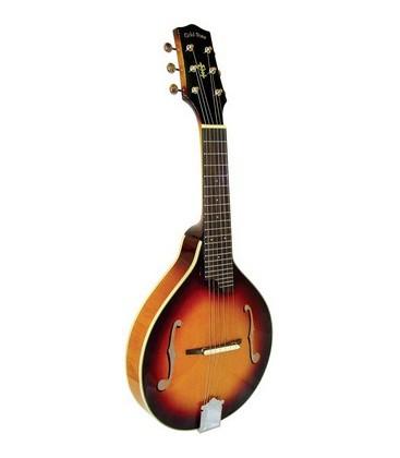 Mandolin - Goldtone - GM-6