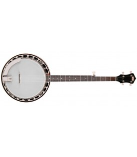 Recording King - Madison RK-R15  - Free Beginner Banjo Kit