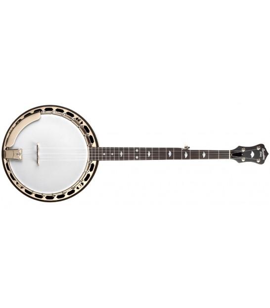 RECORDING KING BANJO - / Bluegrass Resonator Banjo RK-R18 - FREE Beginner  Banjo Kit