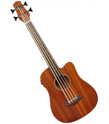 Gold Tone MicroBass Acoustic/Electric Bass Guitar - Fretted