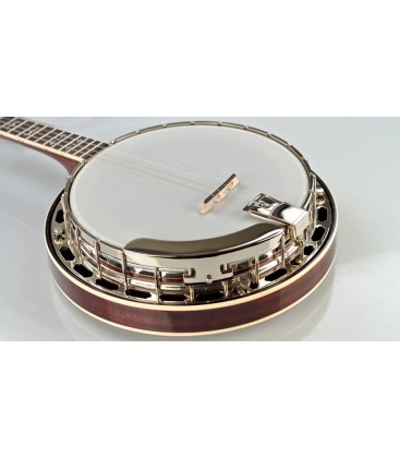 Recording King Madison Tenor Banjo RK-T36