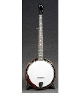 Nechville - Flex-Tone Affordable US Made Banjo