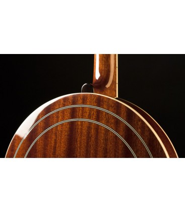 Recording King Banjo - RK- R76 -ELITE