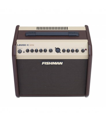 Fishman Loudbox Mini Bluetooth Amplifier - PRO-LBT-500