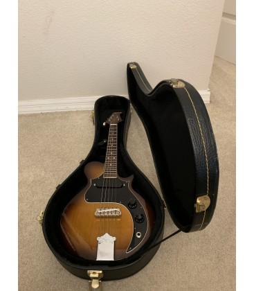 Mandolin - Saga - Kentucky 5-String Electric Mandolin