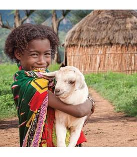 Save the Children - 2- Donation