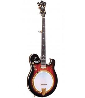 Gold Tone EBM 5 Electric Banjo