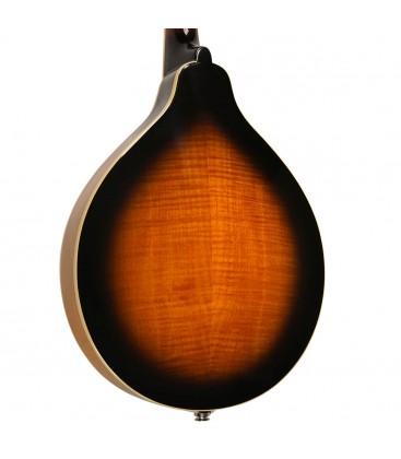 Mandolin - Goldtone - GM-50 Plus