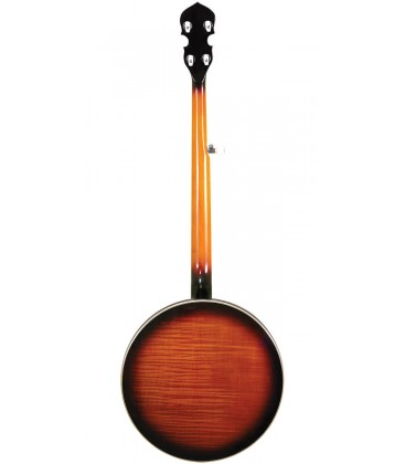 Gold Tone OB-250 Plus