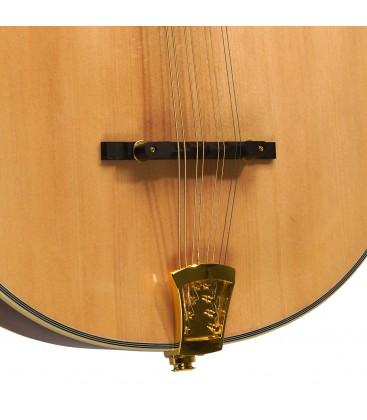 Mandolin - Goldtone - OM-800 - Octave Mandolin