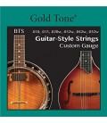 6-String Banjo (Banjitar) Strings
