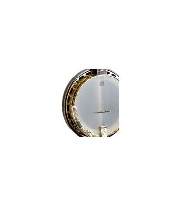 Gold Tone OB-500