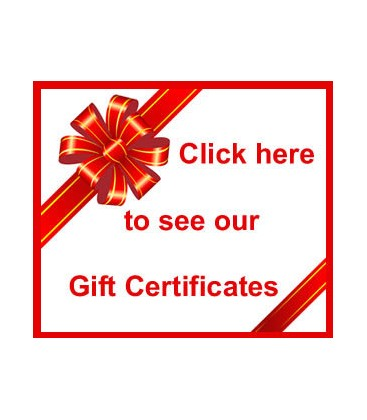 Gift Certificate to BanjoTeacher.com for $300.00