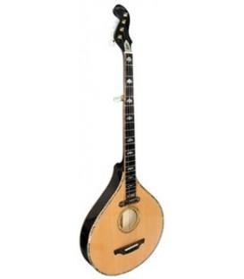 Specialty Banjos