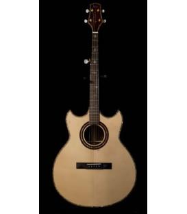 Fossey 5-String Banjo Guitar
