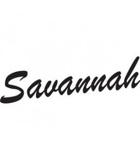 Savannah Beginner Banjos