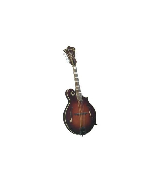 Bluegrass Mandolin | Electric Mandolin | Mandolin Cases