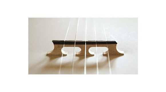 Reset the Bridge on a Five String Banjo